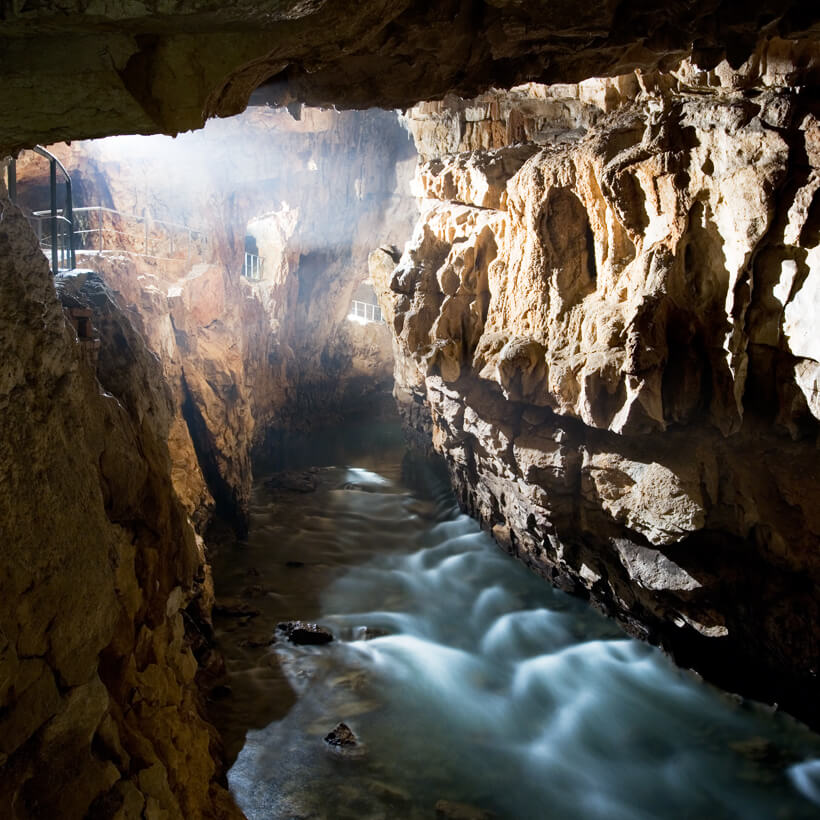 pivka and black caves 187 postojna cave park