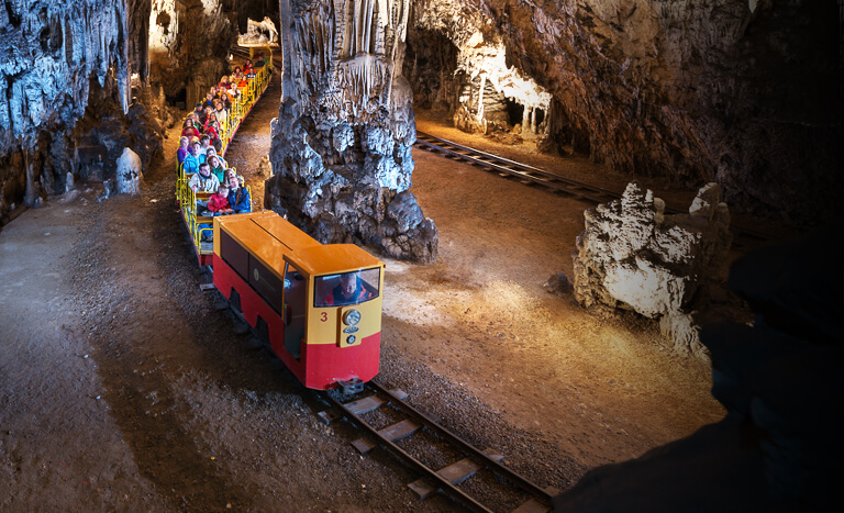Postojna Cave » Postojna Cave Park